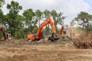 Lakeland Land Clearing